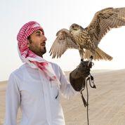 Le Qatar lève le voile sur ses trésors