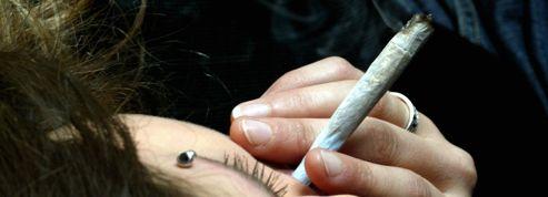 Cannabis : un débat qui divise régulièrement les socialistes