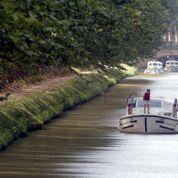 Sursis pour les platanes du Canal du Midi