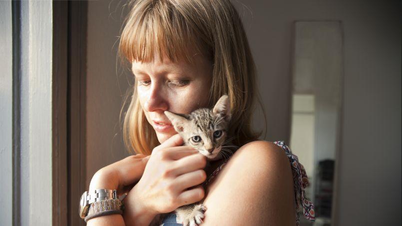 Prot ger son chat c 39 est se prot ger soi m me - Ramoner soi meme sa cheminee assurance ...