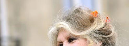 Brigitte Bardot interpelle François Hollande sur l'abattage rituel