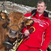 Stéphane Tourt, sa vache est une star