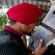Inde : les cavaliers du président