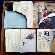 Le Journal d'Anne Frank :le vandale arrêté