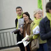 Comment EELV profite de l'épisode de pollution pour faire campagne