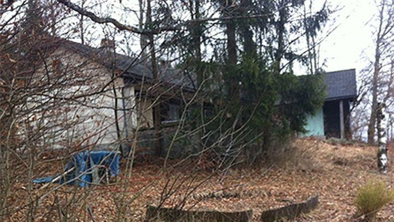 La maisonnette autrichienne ayant appartenu au cousin de Cornelius Gurlitt se trouve à proximité des mines de sel qui abritaient le plus grand trésor du Troisième Reich à la fin de la guerre.