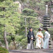 Le Japon célèbre les cerisiers en fleurs