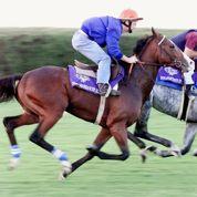 France Galop fait miroiter la fortune sous le sabot d'un cheval