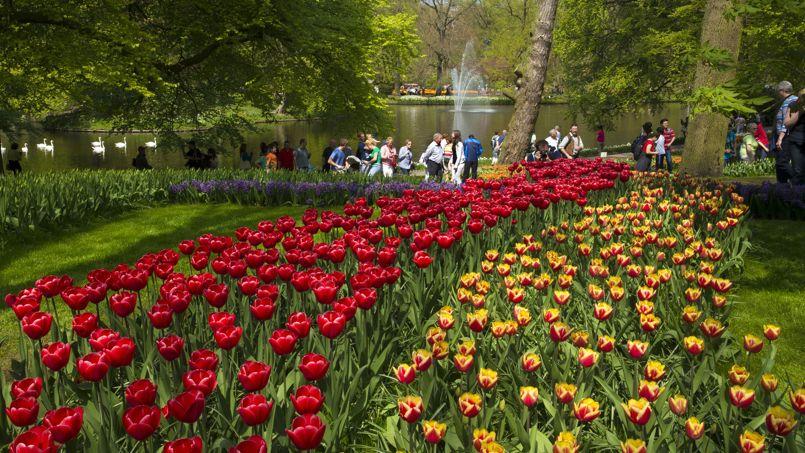 Aux pays bas les jardins de l 39 europe sont en fleurs for Jardin aux fleurs