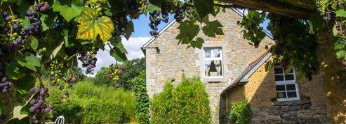 Chambres d'hôtes de Bretagne : Le Cordon Blanc