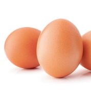 Matines bichonne ses poules pour vendre plus d'œufs