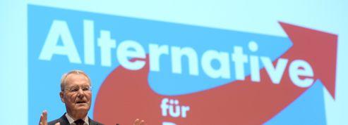 Henkel, du patronat au camp anti-euro