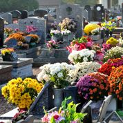 La veuve pourra bien trinquer sur la tombe de son mari