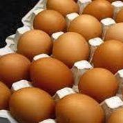 Les œufs bio tirent les ventes d'un marché en crise