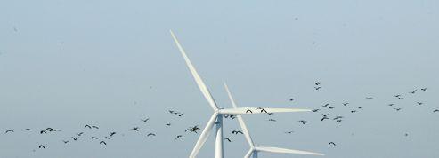 Vols de métaux: les éoliennes ciblées à leur tour