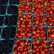 Les fruits et légumes français promettent une excellente cueillette
