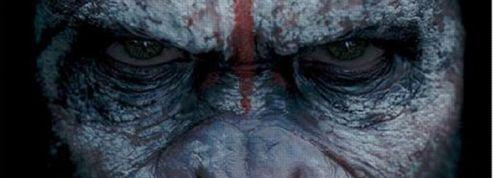 La Planète des singes 2 : César monopolise l'ultime bande-annonce