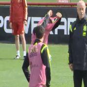 Del Bosque aurait exclu Fabregas de l'entraînement