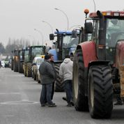 Pourquoi les agriculteurs manifestent pour le «made in France»