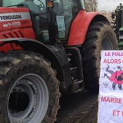 Opérations coup de poing pour le «made in France» agricole