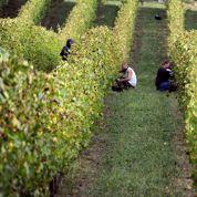 La France s'oppose à l'attribution du «.vin»