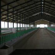Le procès des 1000 vaches reporté au 28 octobre