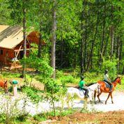 Camping chic au cœur de la forêt dans le Périgord