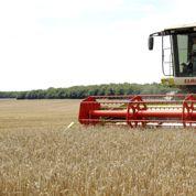 La loi d'avenir agricole crée le statut d'«agriculteur actif»