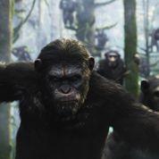 Box office US : les singes éjectent les Transformers du podium