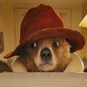 Adoptez l'ours Paddington !