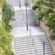La mairie de Paris cherche des espaces à végétaliser