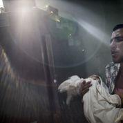 Ukraine, Proche-Orient: «L'attentisme ne nous mettra pas à l'abri des périls de ce monde»