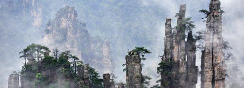 La forêt chinoise qui a inspiré James Cameron pour Avatar