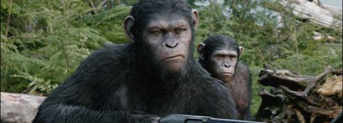 La Planète des singes 2 : Don Corleone chez les primates