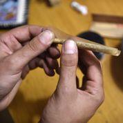 Cannabis : pourquoi la légalisation n'est pas la solution