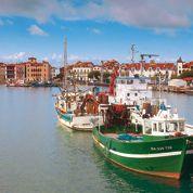 Des chipirons pour jeter l'encre au Pays basque