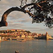 Collioure: plaisir fauve d'un festin d'anchois