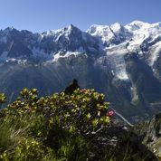Mont-Blanc: un père et son fils de 5 ans interceptés à 3.200 mètres