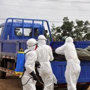 Ebola: une mère et sa fille emmurées vivantes au Liberia