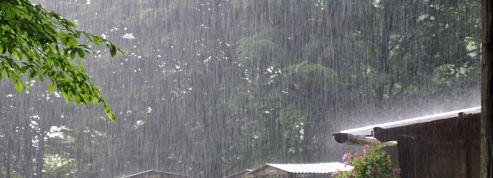 Les jardins pâtissent aussi du mauvais temps