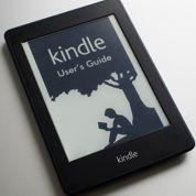 Le prix freine le décollage de l'e-book