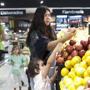 L'Argentine veut profiter de l'embargo russe pour exporter plus