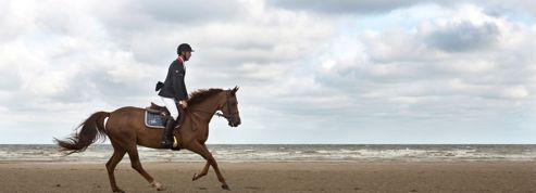 La Normandie ,bastion du cheval de compétition