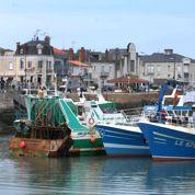 Le secteur de la pêche menacé par la baisse des stocks de poissons