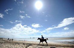 L'endurance aux Jeux équestres mondiaux : le marathon infernal