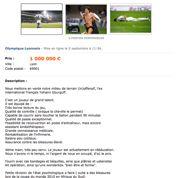 Yoann Gourcuff en vente sur Le Bon Coin