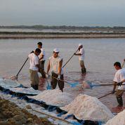 Salins du Midi et le sel La Baleine rachetés par leur patron