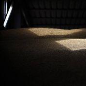 Blé, sucre, lait, soja... : les prix n'ont jamais été aussi bas depuis 2010