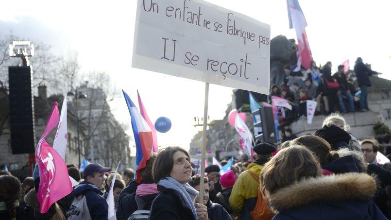 Défilé de La Manif pour tous, le 2 février 2014 à Paris.