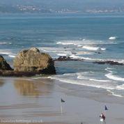 Locations de vacances de la Toussaint : dans quelles régions trouver les meilleurs prix
